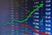 دلایلی که مانع رشد بازار شده است