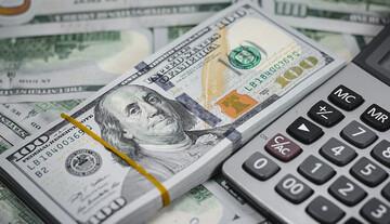 بساط ارز دولتی را جمع کنید/ کنترل ارز غیرممکن نیست، راه اشتباه است